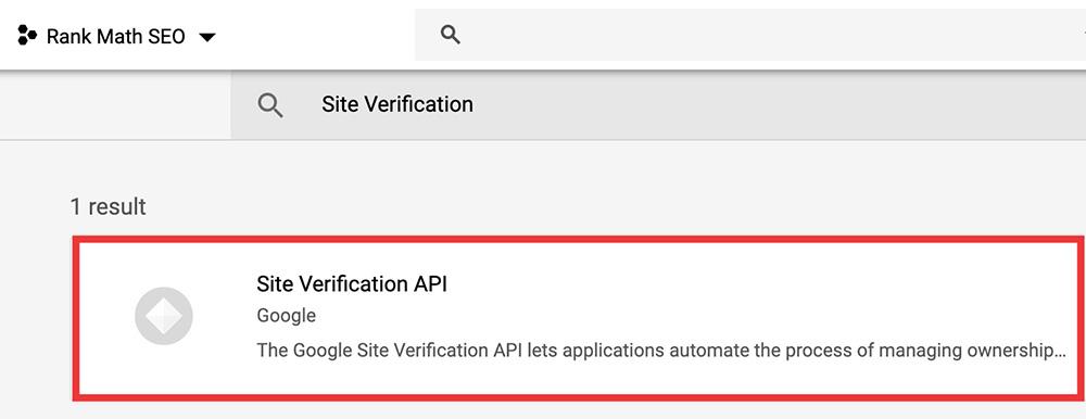 Google API Site Verification API
