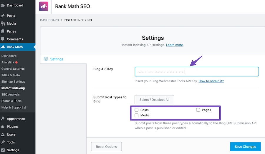 Enter API key in the Rank Math