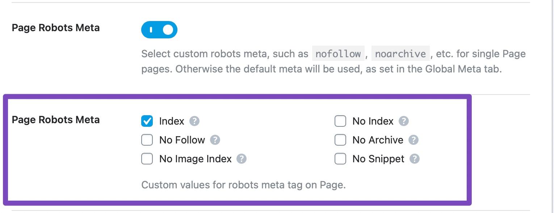 page robots meta custom settings