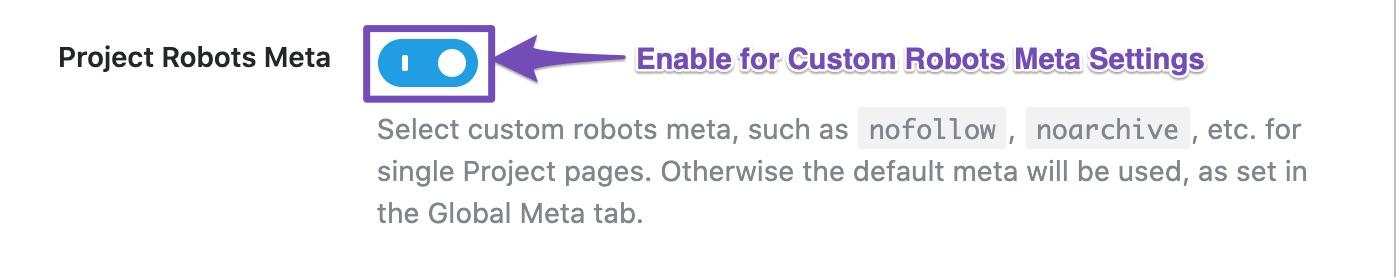 Custom robots meta settings for project