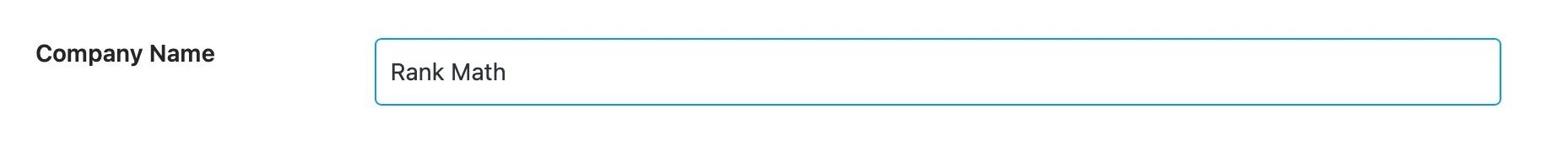 Rank Math Setup Wizard - Company Name option