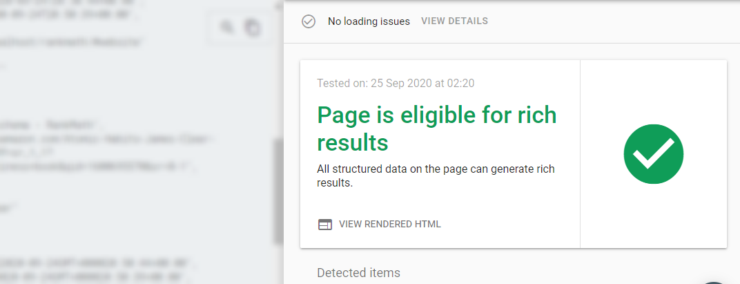 Google Rich Results Testing Tool Results