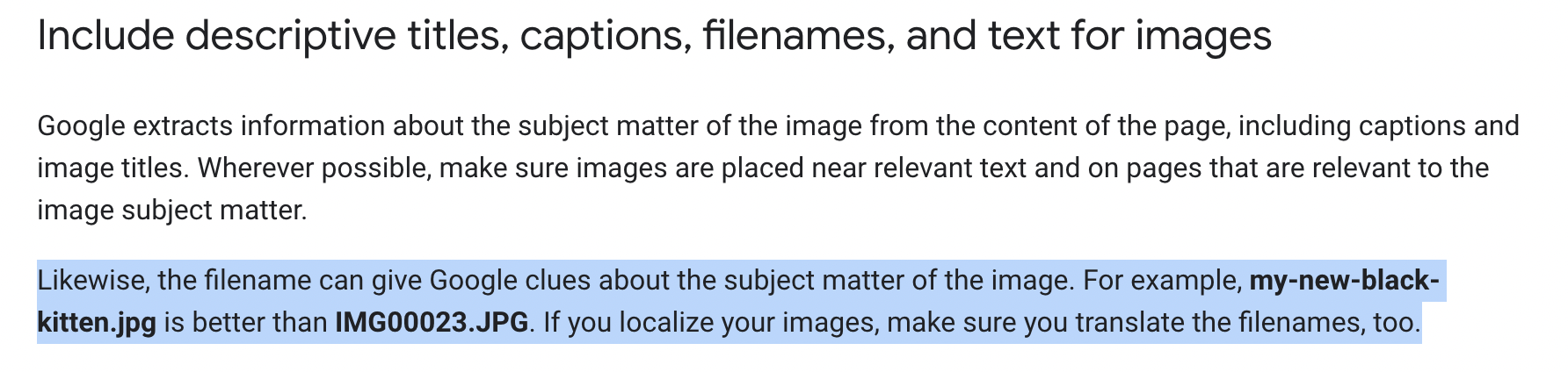 Google Title, Caption, File Name and Alt Text Guidelines for Images
