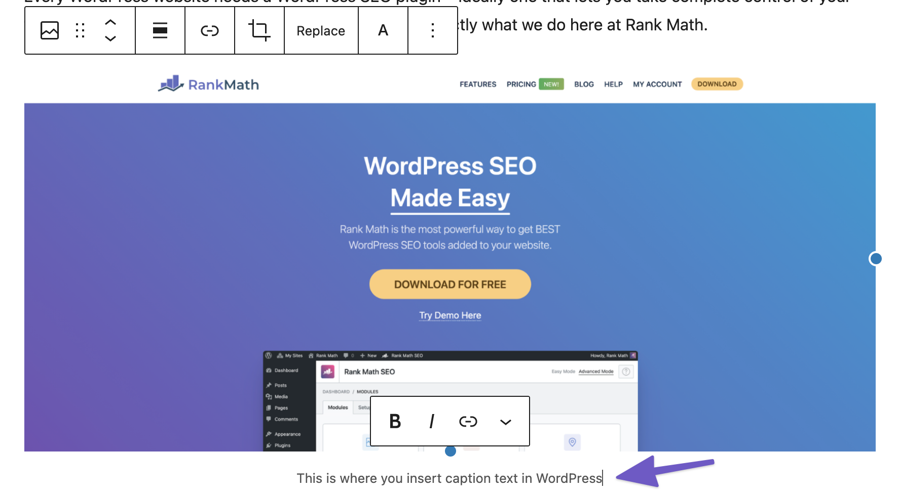 How To Add Image Captions in WordPress