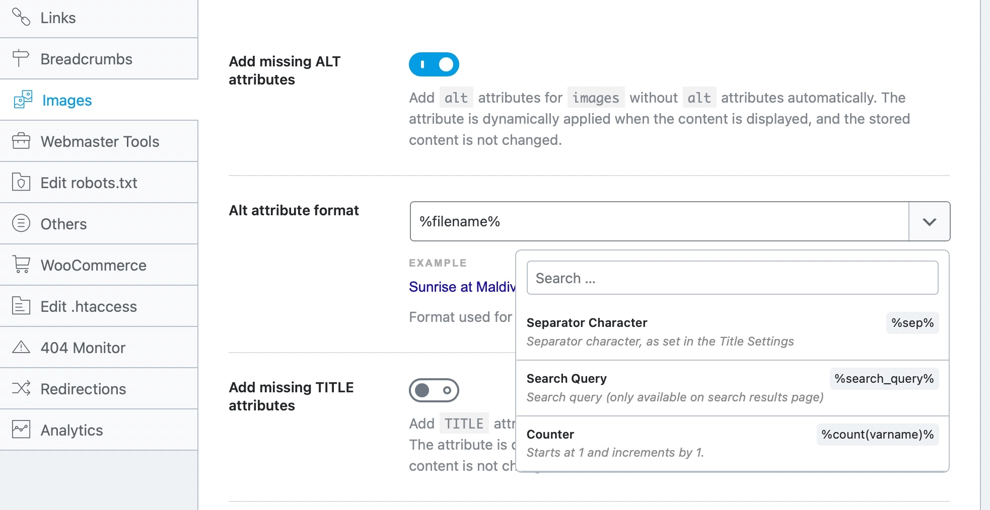 Add Missing Alt Attributes