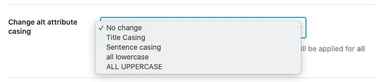 Change alt attribute casing