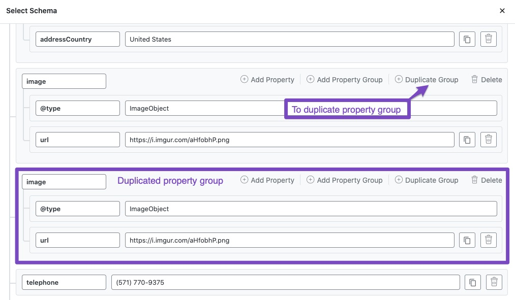 Duplicate property group