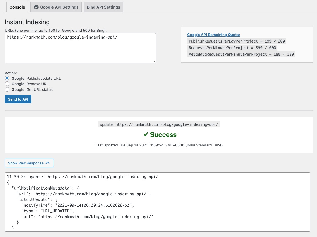 Instant Indexing API success message